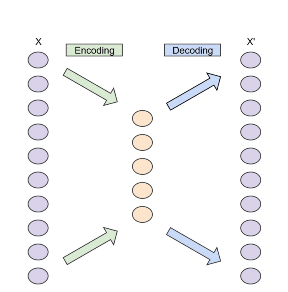 Schema eines Autoencoders